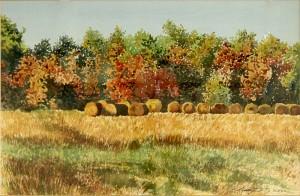 Hay Bales by Judy Dixon